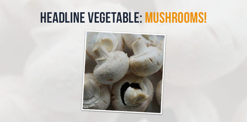 Headline Vegetable - Mushrooms